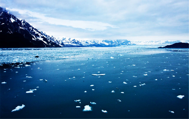 Interesting Facts About The Arctic Ocean
