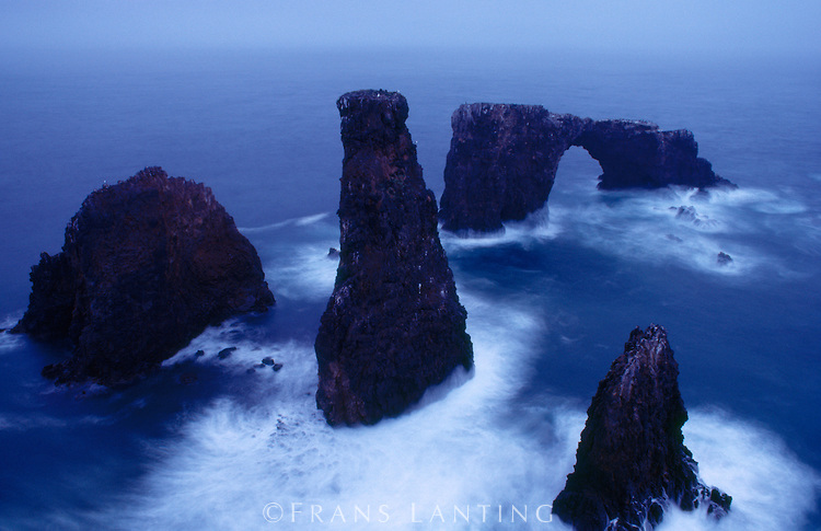 Anacapa Arch, Channel Islands National Park - California