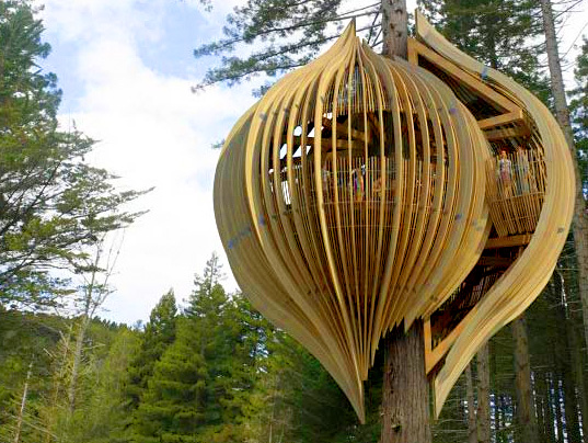 Top 5 Tree Houses