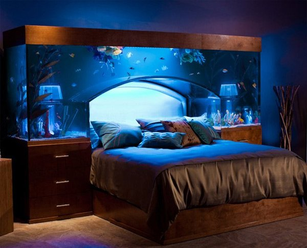 The Aquarium Bed