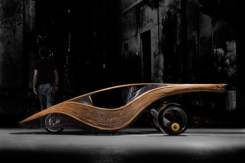Car Made Out Of bamboo