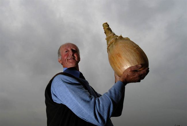 The Worlds Largest Onion