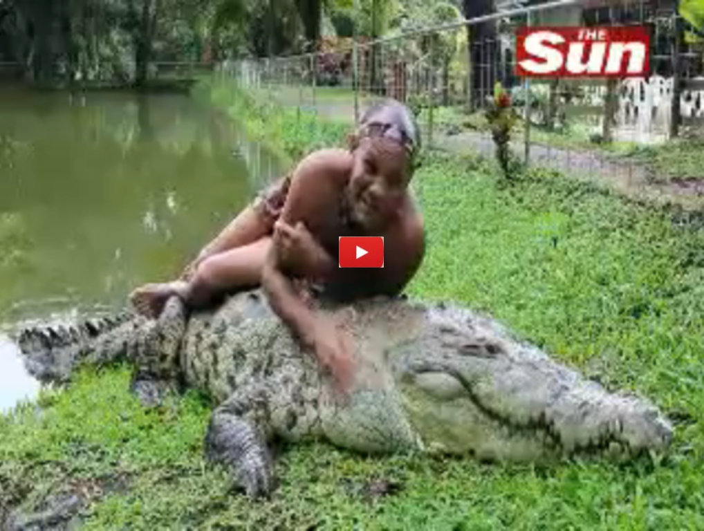 Man Swims With 17 Foot Crocodile