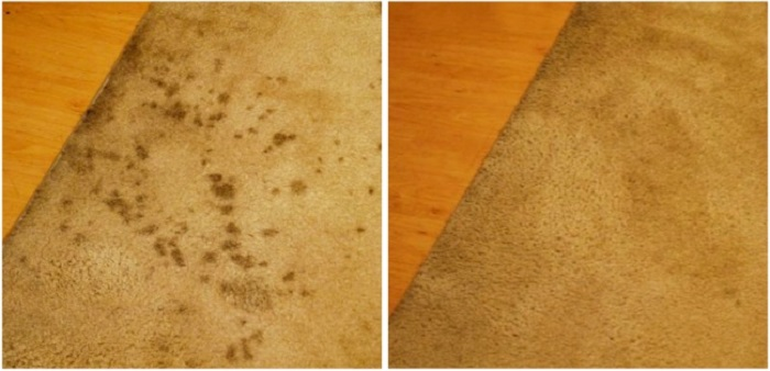 Photo Credit: http://www.lizzywrite.com/2011/02/magical-carpet-cleaner.html